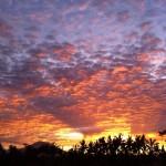 バリ島ウブド近郊の朝焼けを動画で