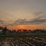 バリ島ウブド近郊2014年11月22日(土)の朝陽とアグン山