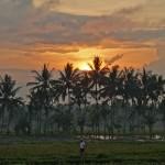 バリ島ウブド近郊2014年11月23日(日)の朝陽とアグン山