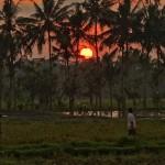 バリ島ウブド近郊2014年11月24日(月)の朝陽とアグン山