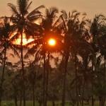 バリ島ウブド近郊2014年11月27日(木)の朝陽とアグン山