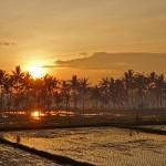 バリ島ウブド近郊12月21日(日)の朝陽とアグン山