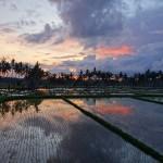 バリ島ウブド近郊2014年12月24日(水)の朝陽とアグン山