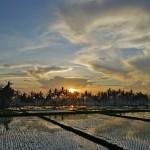 バリ島ウブド近郊2014年12月26日(金)の朝陽とアグン山
