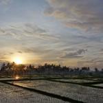 バリ島ウブド2014年12月27日(土)の朝陽とアグン山