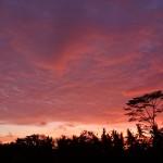 バリ島ウブド近郊2015年1月4日(日)の夕焼け