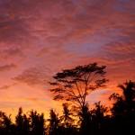 バリ島ウブド近郊2015年1月5日(月)の夕焼け