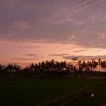 バリ島ウブド近郊2015年1月18日(日)の朝陽