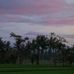 バリ島ウブド近郊2015年1月19日(月)の朝陽と朝焼けに染まるアグン山