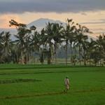 バリ島ウブド近郊2015年1月21日(水)の朝陽とアグン山