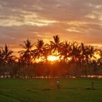 バリ島ウブド近郊2015年1月25日(日)の朝陽