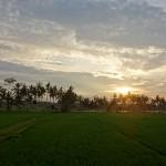 バリ島ウブド近郊2015年1月26日(月)の朝陽