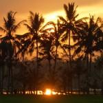 バリ島ウブド近郊2015年1月27日(火)の朝陽