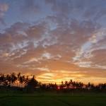 バリ島ウブド近郊2015年2月11日(水)の朝陽
