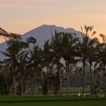 バリ島ウブド近郊2015年2月4日(水)の朝陽