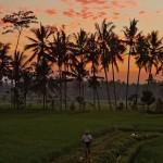 バリ島ウブド近郊2015年2月5日(木)の朝陽