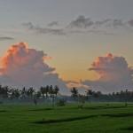 バリ島ウブド近郊2015年2月6日(金)の朝陽