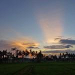 バリ島ウブド近郊2015年2月7日(土)の朝陽