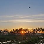 バリ島ウブド近郊2015年6月11日(木)1週間ぶりの日の出を拝む事が出来ました。