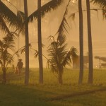 乾季らしいバリ島の朝