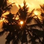2015年9月24日(木)の朝陽