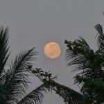 バリ島ウブド近郊2015年9月29日(火)の朝陽