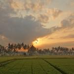 バリ島ウブド近郊2015年10月7日(水)の朝陽