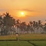 バリ島ウブド近郊2015年10月12日(月)の朝陽