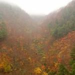 新潟県苗場のドラゴンドラで紅葉見に行ってきました