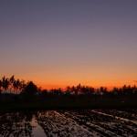 バリ島ウブド近郊2015年11月24日(火)の朝陽