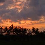 バリ島ウブド近郊2015年11月25日(水)の朝陽