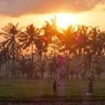 バリ島ウブド近郊2015年11月26日(木)の朝陽
