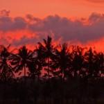 バリ島ウブド近郊2015年11月27日(金)の朝。朝焼けが良かった!
