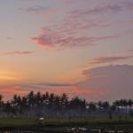 バリ島ウブド近郊2015年11月29日(日)の朝陽