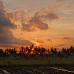 バリ島ウブド近郊2015年11月30日(月)の朝陽