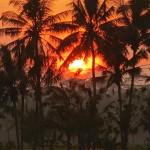 バリ島ウブド近郊2016年1月30日(土)の朝陽