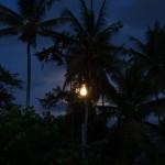 バリ島ウブド近郊2016年2月23日(火)の朝陽(満月も見えた)