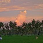 バリ島ウブド近郊2016年2月25日(木)の夕焼け空はとても綺麗だった!