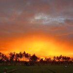 バリ島ウブド近郊2016年2月27日(土)の朝陽は素晴らしい朝焼けでした【動画あり】