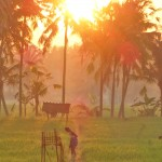 【朝焼けを撮影した動画あり】バリ島ウブド近郊2016年3月6日(日)の朝陽