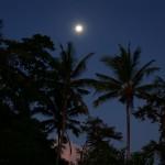 バリ島ウブド近郊2016年3月25日(金)の朝陽