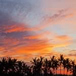 バリ島ウブド近郊2016年3月31日(木)朝の風景