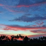 バリ島ウブド近郊2016年5月31日(火)朝の風景