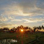 【朝焼けから日の出まで3本の動画撮影しました】バリ島ウブド近郊2016年6月24日(金)朝の風景