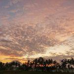 バリ島ウブド近郊2016年7月2日(土)朝の風景