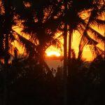 【美しい日の出の動画付き】バリ島ウブド近郊2016年7月24日(日)朝の風景