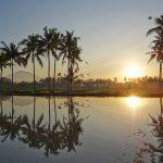 【アグン山と日の出の動画付き】バリ島ウブド近郊2016年8月29日(月)朝の風景