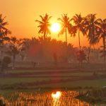【朝陽が出てきて昇りきるまで動画撮影してみた】バリ島ウブド近郊2016年9月6日(火)朝の風景