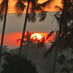 バリ島ウブド近郊2016年9月24日(土)朝の風景