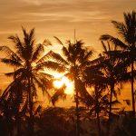 バリ島ウブド近郊2016年11月14日(月)朝の風景